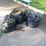 Мешки с мусором вывезли на свалку